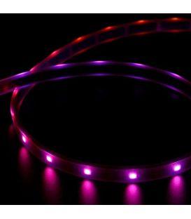 Lanksti LED juosta RGB 6W 12V IP67 hermetiška RFX515RGBIP