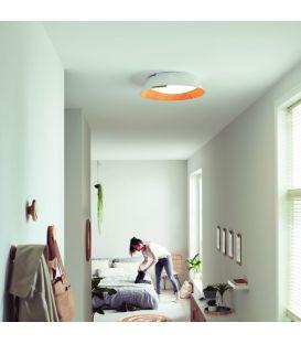 22W LED lubinis šviestuvas NONAGON 49020/31/P1