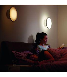 Sieninis šviestuvas HUE PHOENIX LED 871869612653