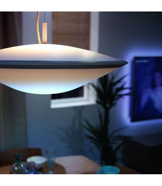 Pakabinamas šviestuvas HUE PHOENIX LED