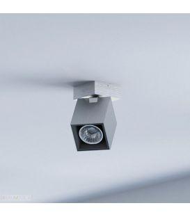 Lubinis šviestuvas FORWARD 53130/48/PN