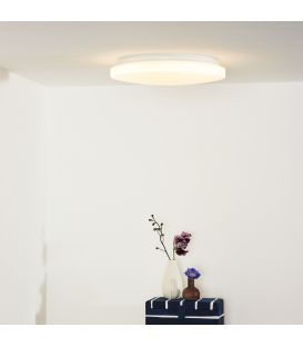 Lubinis šviestuvas OTIS LED Ø34 79199/26/61