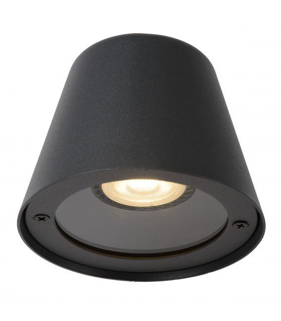 Sieninis šviestuvas DINGO IP44 14881/05/30