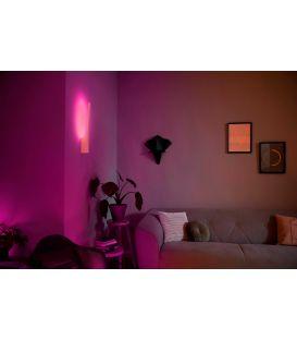 12W LED Sieninis šviestuvas LIANE HUE LED White 8718696169681