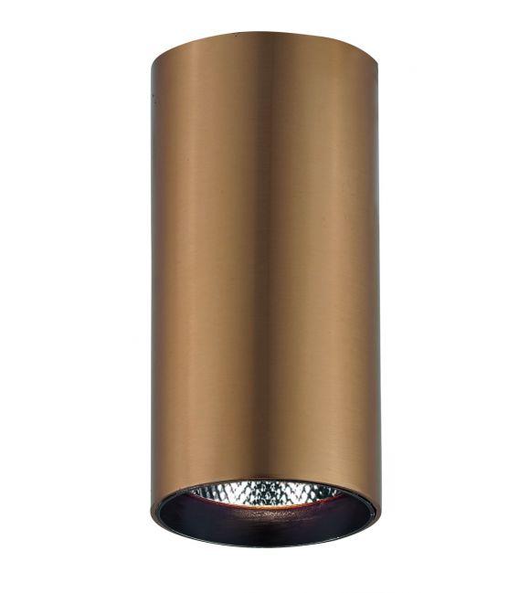 30W LED Lubinis šviestuvas NESTOR 4214402