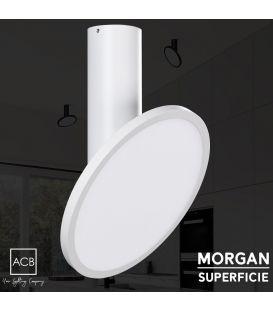 18W LED Lubinis šviestuvas MORGAN White P384610B