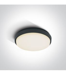 25W LED Lubinis šviestuvas Anthracite IP54 67362/AN/W