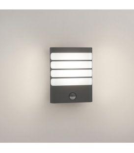 Sieninis šviestuvas RACCOON LED IP44 17274/93/16