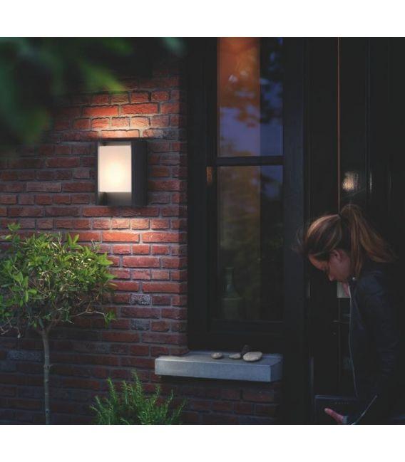 Sieninis šviestuvas ARBOUR LED